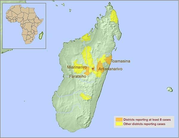 Plague Outbreak Leaves 57 Dead in Madagascar - VIGILINT